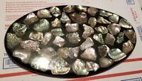 Vintage Huge MCM Abalone Shell Resin Lucite Trivet 15 x 9