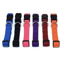 Dog Puppy Nylon Collar - Bulk Rescue Shelter Litter - 6 Colors 2 Sizes