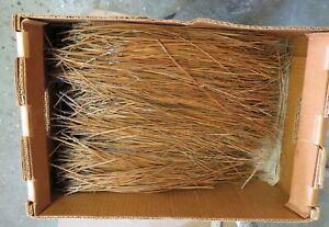 2 lbs. Alabama long leaf pine needles, basket weaving, pine needles, crafts