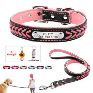 Collare e guinzaglio per Cani Identificativo Personalizzato Nome Colletto XS-XL