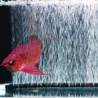 Fish Tank Aquarium Air Stone Bubble Bar Curtain Diffuser Aerator Tube Pump IN9