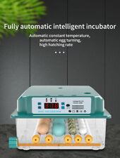 Incubateur D'œufs automatique