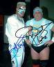 Dusty Rhodes & Sting Autograph Pre Print Wrestling Photo 8x6 Inch