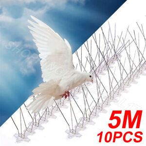 10 PCS Anti Bird Spikes Pigeon Scarer/Sea gull Wall Fence Deterrent Repeller UK