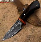 SFK Custom Handmade Damascus Steel Walnut Wood Art Hunting Skinner Knife