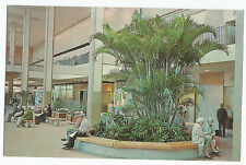 Rochester NY Midtown Plaza Mall Palms Vintage Postcard
