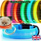 USB+Rechargeable+LED+Dog+Pet+Collar+Flashing+Luminous+Safety+Light+Up+Nylon+UK