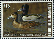 """RW#74 2007 $15 """"RING-NECKED DUCK"""" STAMP ISSUE MINT-OG/NH"""