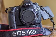 CANON EOS 60D NUMERIQUE + SOCLE BG-E9
