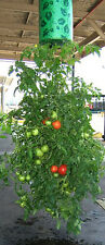 Tomato Outdoor Upside Down Hanging Planter System Garden Plant Greening Planting