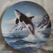 "COALPORT ENGLAND ""NOBLE OCEAN FRIENDS "" KILLER WHALE CP353"