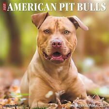 "Willow Creek American Pit Bull Terriers 2020 Wall Calendar 18 Months 12""X12"" w"