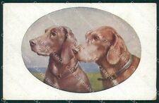 Bracco Kurzhaar Dog by Reichert MM 1219 postcard cartolina QT6976