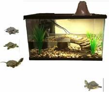 Aquatic Turtle Habitat Aquarium Xl Reptile Complete Water Kit Set Portable Tank