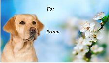 Labrador Retriever (Yellow) Dog Self Adhesive Gift Labels by Starprint