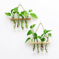 Wooden Frame Glass Test Tubes Hanging Vase Planter Bud Flower Terrarium Vase