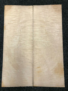 Muschelahorn | Quilted Maple | Top | AAAAA | Tonewood | Tonholz