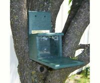 SQUIRRELS  - GIFTS FOR SQUIRREL LOVERS -Recycled Plastic Squirrels Only Feeder