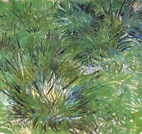 Vincent Van Gogh Clumps of Grass 1889 Vintage Print