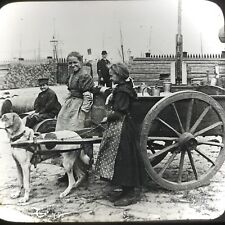 Vtg Keystone Magic Lantern Slide Photo Milk Cart Antwerp Belgium Dog Cart Wagon