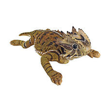 Scaly Horny Toad Realistic Exotic Lizard Reptile Animal Yard Garden Sculpture