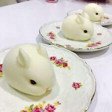 3D Rabbit Silicone Fondant Mould Cake Mold Chocolate Bake Sugarcraft Decor Tools
