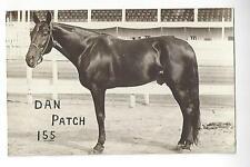 Dan Patch Trotter - Horse Racing RPPC