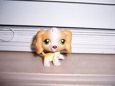 Littlest Pet Shop Cocker Spaniel Dog #79 Lps Hasbro E