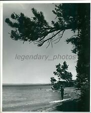 1974 Young and Old Fish at Yellowstone National Park Original News Service Photo