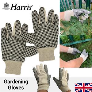 Gardening Gloves Ladies Women Thorn Proof Small Medium Hand Garden Cleaning DIY