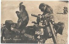 Comic Motorcycle Gibralter Rock Apes on a BSA maybe