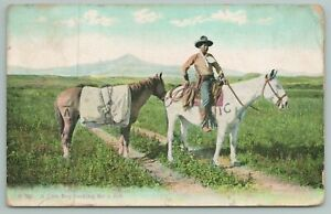 Chinook Montana Publisher~A Cowboy Looking For A Job~1908 Postcard