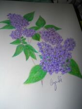COLORED PENCIL drawing   flowers lilacs