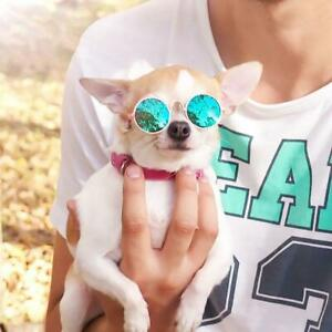 Dog Cat Pet Sunglasses Puppy Eye-wear Glasses Small Dogs Products Accessories