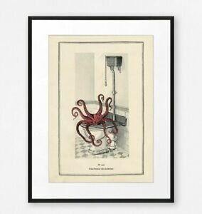 Funny Vintage Surreal Octopus Bathroom Toilet Wall Art Print Old Illustration
