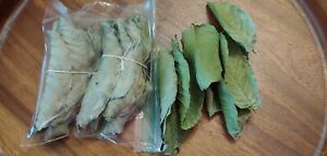 Dried Guava Leaves Organic Psidium Guajava Dried Leaves-3 oz (about 100+ Pcs)