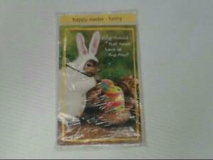 "American Greetings Happy Easter Funny Card ""Why Should That"" Retail Pack of 6"