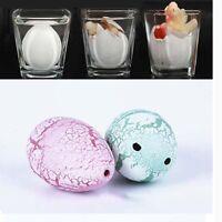 Hatching Growing Dinosaur Dino Eggs Add Water Magic Cute Children Kids Toy WA