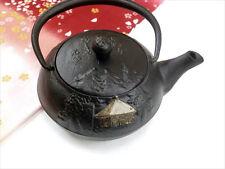 Japanese Cast Iron Tetsubin Kettle Tea Pot Golden Hall Rain Zen Buddhism Poetry