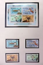 BAHAMAS Birds U/M NB3338