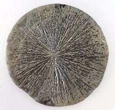 "4"" PYRITE SUN DOLLAR Iridescent Crystal Sparta Illinois Coal Mine X-LARGE"