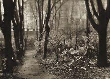 1940/56 Vintage Josef Sudek Prague Cemetery Landscape Tombs Photo Gravure Art