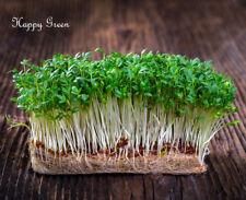 Germinación Semillas Berro Semillas brotes - 11 - 000 semillas - 30 Gramos-Legumbres