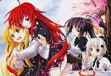 Poster A3 High School DxD Rias Gremory Issei Ecchi Hentai Manga Anime Cartel 02