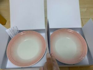 Very Rare !! Le Creuset Round Plate 220mm 2 Pieces Set Powder Pink Unused Cute!!