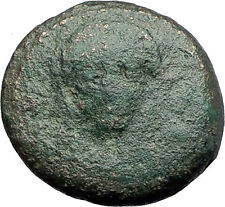 PELLA in MACEDONIA 148BC Scarce Authentic Ancient Greek Coin DEMETER BULL i61550