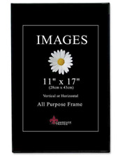 Picture Frame 11 X 17 For Sale Ebay