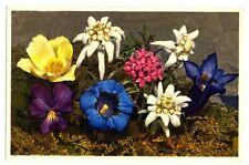 CPA Fantaisie Fleurs de Montagne Edelweiss  Gentianes Anémones
