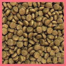 15kg Salmon & Rice Sensitive Hypoallergenic Super Premium Adult Active Dog Food