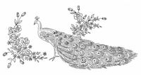 Vintage Visage iron on embroidery transfers- 2 vintage peacock designs 2 sizes